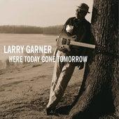 Here Gone Tomorow fra Larry Garner
