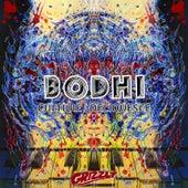 Culture / Deliquesce by Bodhi