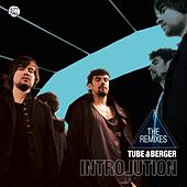 Introlution Remixed von Tube & Berger