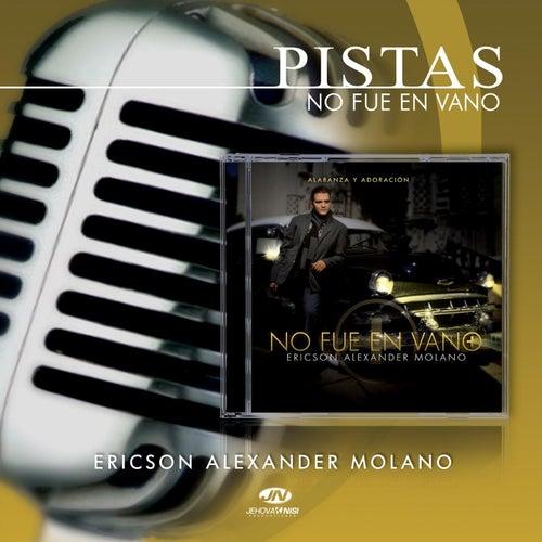 Pistas No Fue En Vano by Ericson Alexander Molano