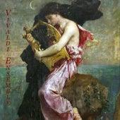 Pachelbel: Canon - Vivaldi: The Four Seasons - Bach: Air On the G String - Albinoni: Adagio - Mendel by Various Artists