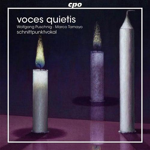 Voces Quietis by Schnittpunktvokal Male Quartet