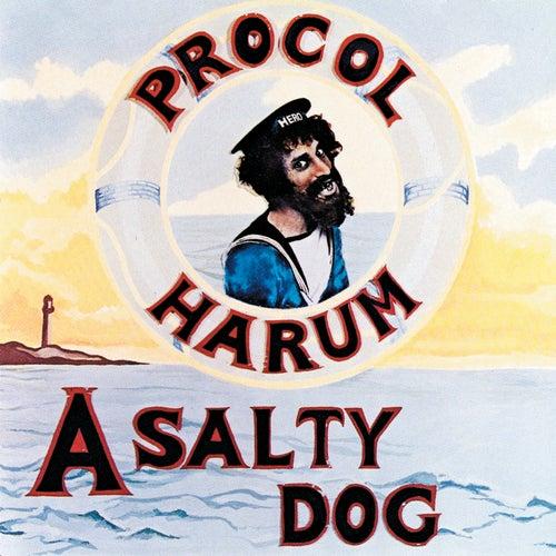 A Salty Dog by Procol Harum