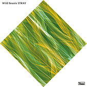 Stray by Wild Beasts