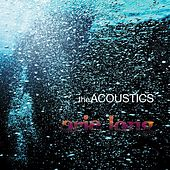 Erie Long by The Acoustics