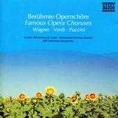 Famous Opera Choruses de Various Artists