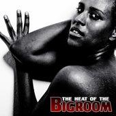 The Heat of the Bigroom de Various Artists