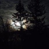 The Dark by Ric Eittreim