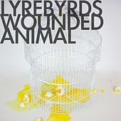 Wounded Animal by Lyrebyrds
