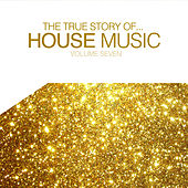 The True Story of House Music, Vol. 7 by Various Artists
