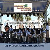 Live At the 2012 Amelia Island Blues Festival by Roger Hurricane Wilson