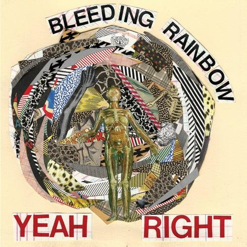 Yeah Right by Bleeding Rainbow