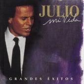 Mi Vida: Grandes Exitos de Julio Iglesias