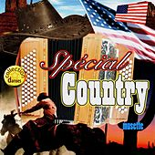 Spécial country musette by Various Artists