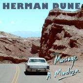 Mariage à Mendoza de Herman Dune