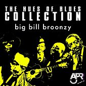 The Hues of Blues Collection, Vol. 10 by Big Bill Broonzy