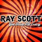 You Drive Me Crazy von Ray Scott