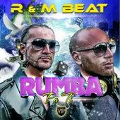 Rumba Pa Ti (Way2play Remix) by The R