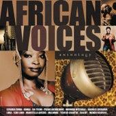 African Voices de Various Artists