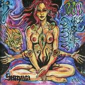 Sunyata by Acrimonious