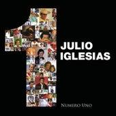 Numero Uno de Julio Iglesias