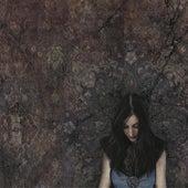 Little Hells de Marissa Nadler