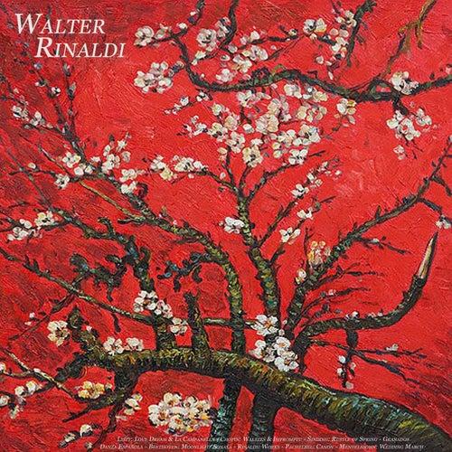 Liszt: Love Dream & la Campanella - Chopin: Waltzes & Impromptu - Sinding: Rustle of Spring - Granad by Walter Rinaldi