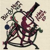 Jaded Future EP von Birdy Nam Nam