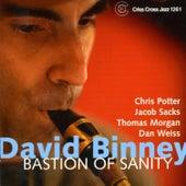 Bastion of Sanity by David Binney