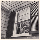 What a Pleasure by Beach Fossils