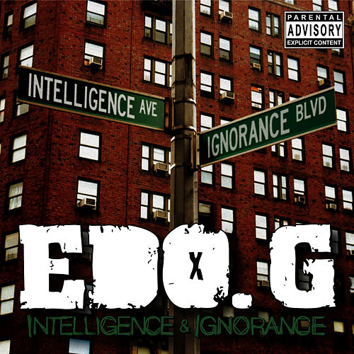 Intelligence & Ignorance by Edo G.