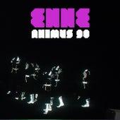 Animus 90 by Enne