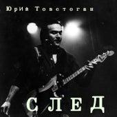 Sled by Yuri TovSt'Gun