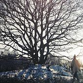 Trees by Patrick Dawes