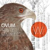 Winter Warmers Vol 2 von Various Artists