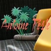 Amour Lemon de Antoine Pesle