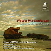 Figures in a Landscape (Music for Marimba Flute and Percussion) by Various Artists