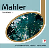 Mahler: Sinfonie Nr.1 de Columbia Symphony Orchestra