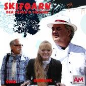 Skifoarn by Erwin