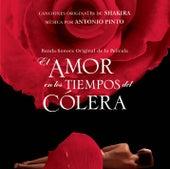 El Amor En Los Tiempos del Colera (Love In The Time Of Cholera) de Various Artists