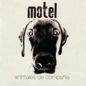 Animales de Compañía von Motel