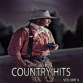 Country Hits, Vol. 6 de Various Artists