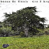 Can I Say by Songs Of Trees