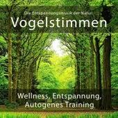 Die Entspannungsmusik der Natur: Vogelstimmen (Wellness, Entspannung und Autogenes Training) von Entspannungsmusik