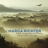Richter: Poetic Images Beyond Poetry by Various Artists