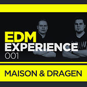 EDM Experience 001 (Mixed Version) de Various Artists