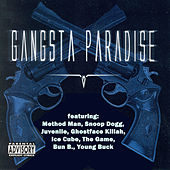 Gangsta Paradise (The Ultimate Hip Hop Collection) von Various Artists