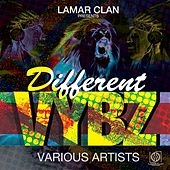 Different Vybz by Various Artists