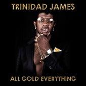 All Gold Everything van Trinidad James