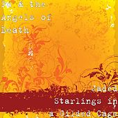 Jaded Starlings in a Gilded Cage by Pc & the Angels of Death